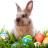 Buona Pasqua da Poggio Torreano!
